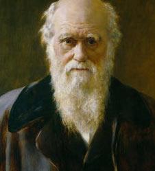 Charles-Darwin-by-John-Co-001